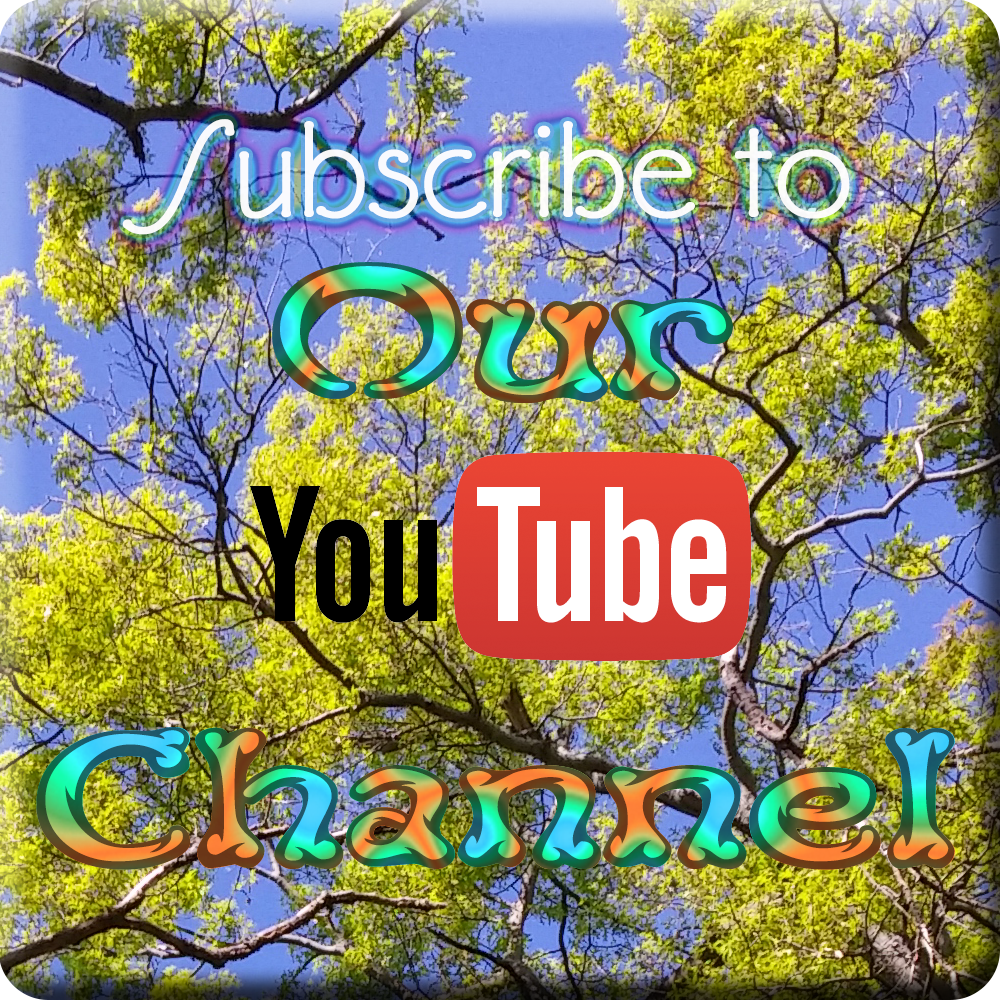 Subscribe to our YouTube channel.